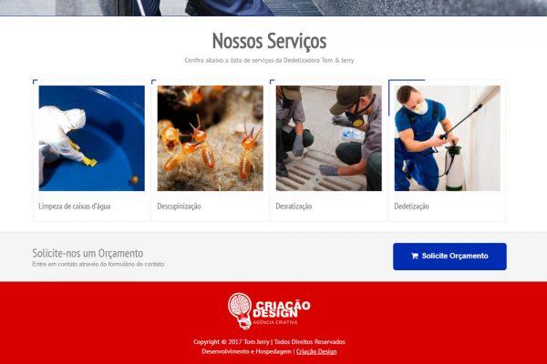criar-paginas-web-empresarialriais